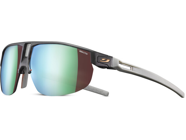 Julbo Rival Reactiv All Around 2-3 Sunglasses tortoiseshell grey/green